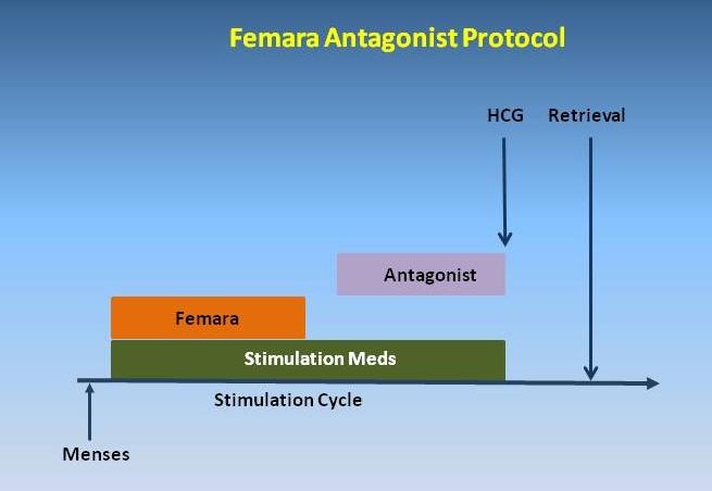 Aggressive IVF Protocols Specialist - Irving, TX & Arlington, TX