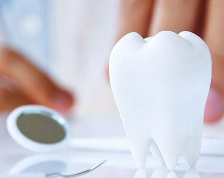 All Family Shoreline Dental